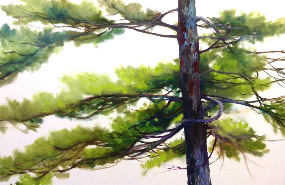 """Pine Tree Portrait"" original fine art by Cathy Boyd"