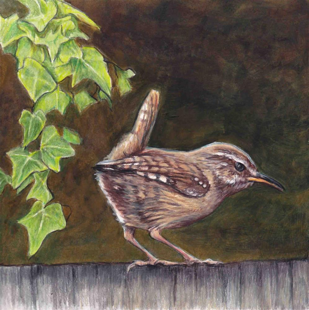 """House Wren"" original fine art by Charlotte Yealey"