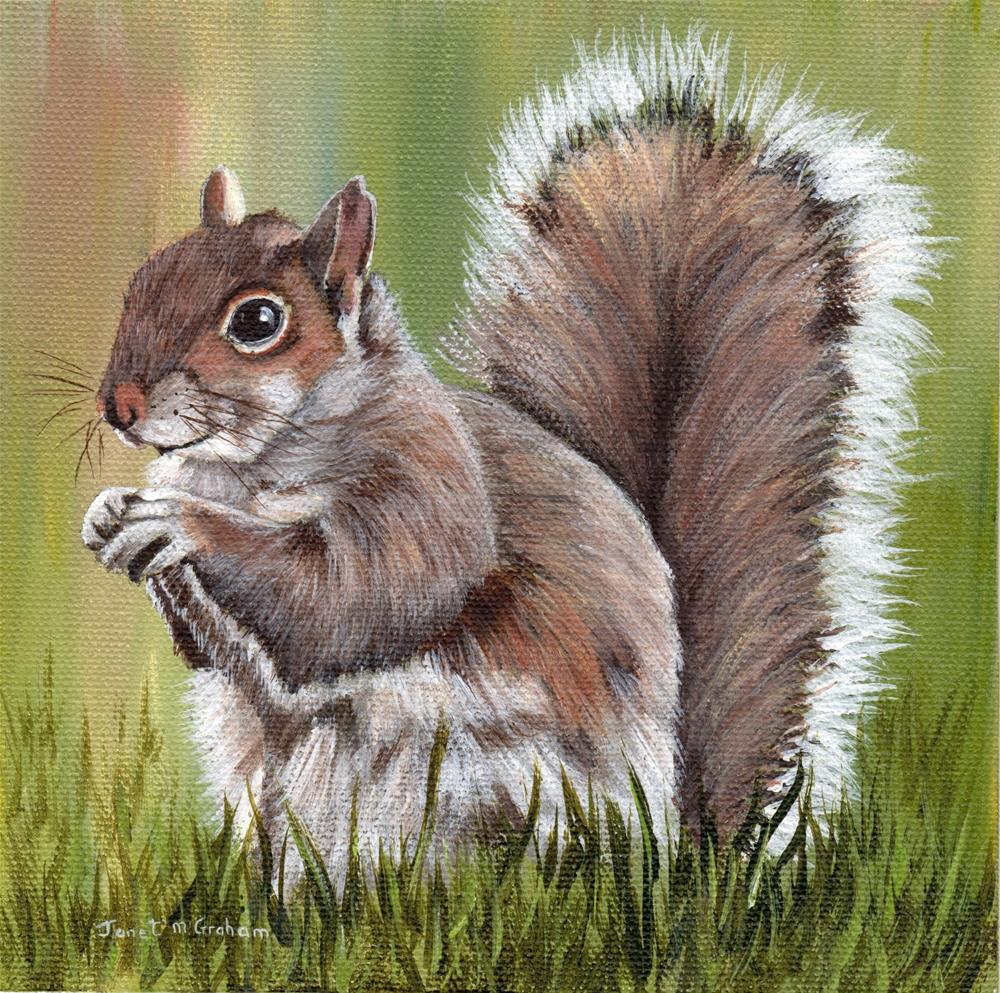 """Squirrel"" original fine art by Janet Graham"
