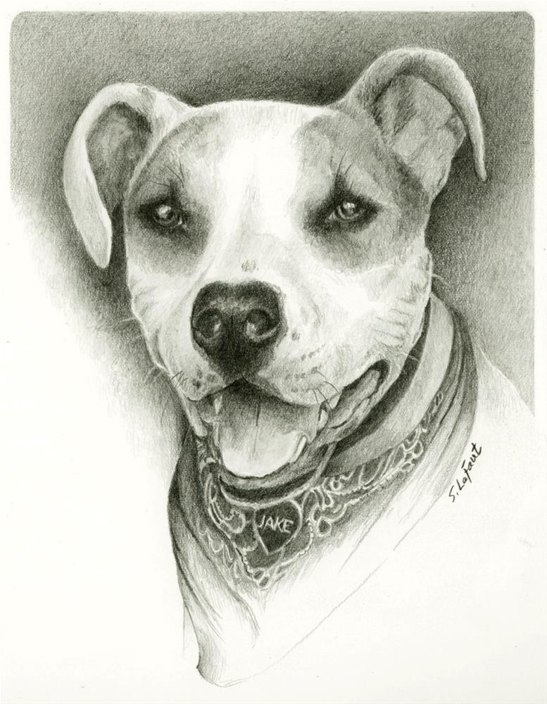 """Jake"" original fine art by Sandra LaFaut"