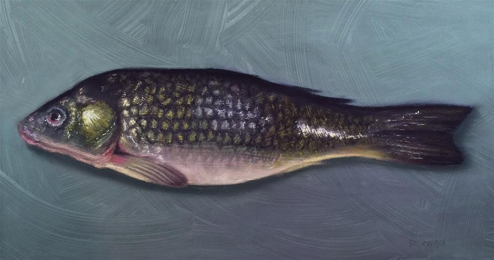 """Common Carp"" original fine art by Cristine Kossow"
