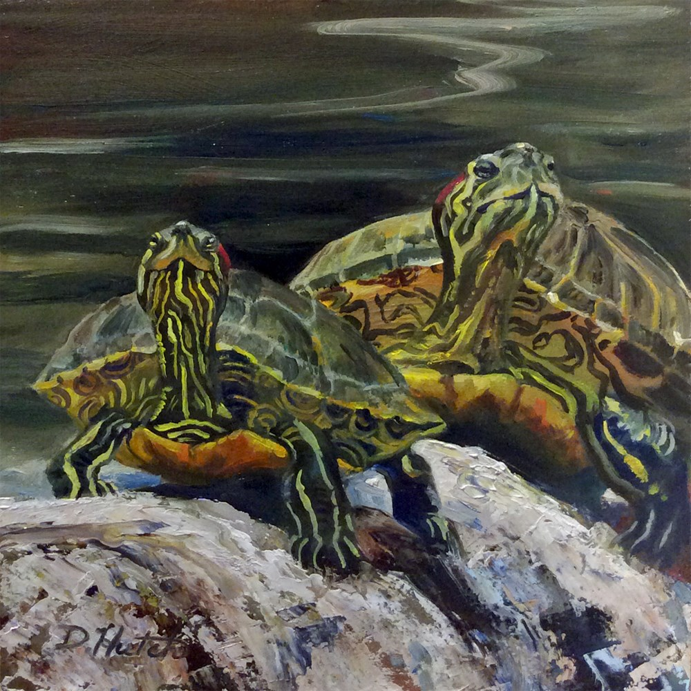 """Sunbathing Beauties"" original fine art by Diane Hutchinson"