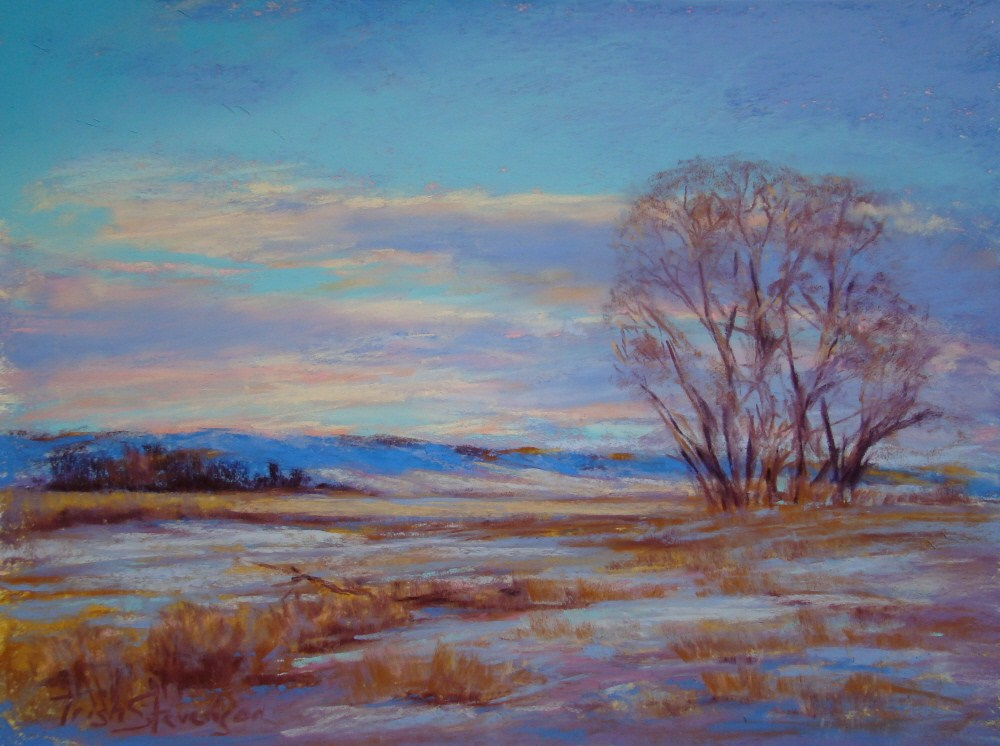 """Winter Color"" original fine art by Trish Stevenson"