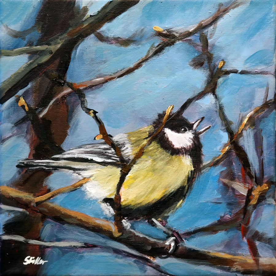 """1687 Blue Tit"" original fine art by Dietmar Stiller"