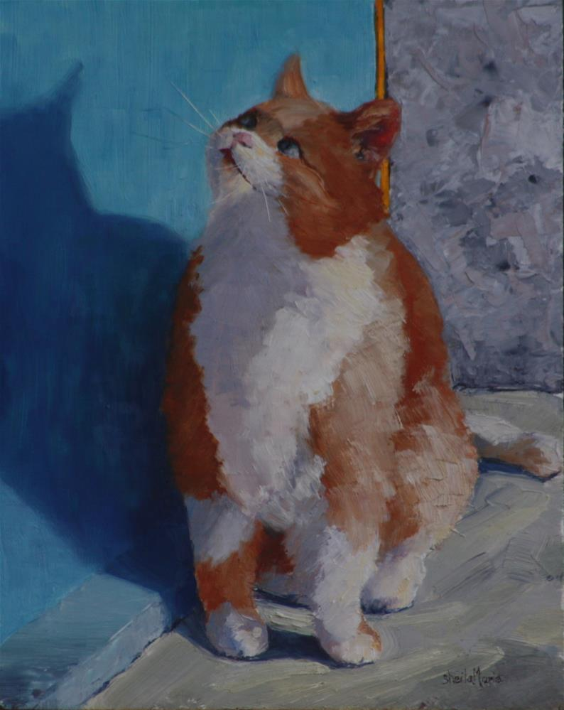 """""""Fat Cat in Vernazza"""" original fine art by Sheila Marie"""