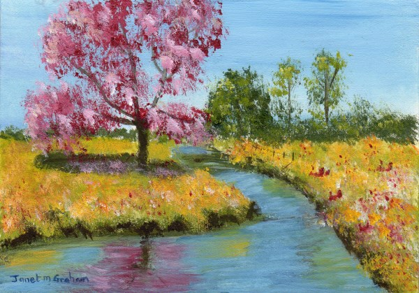 """Summer River ACEO"" original fine art by Janet Graham"