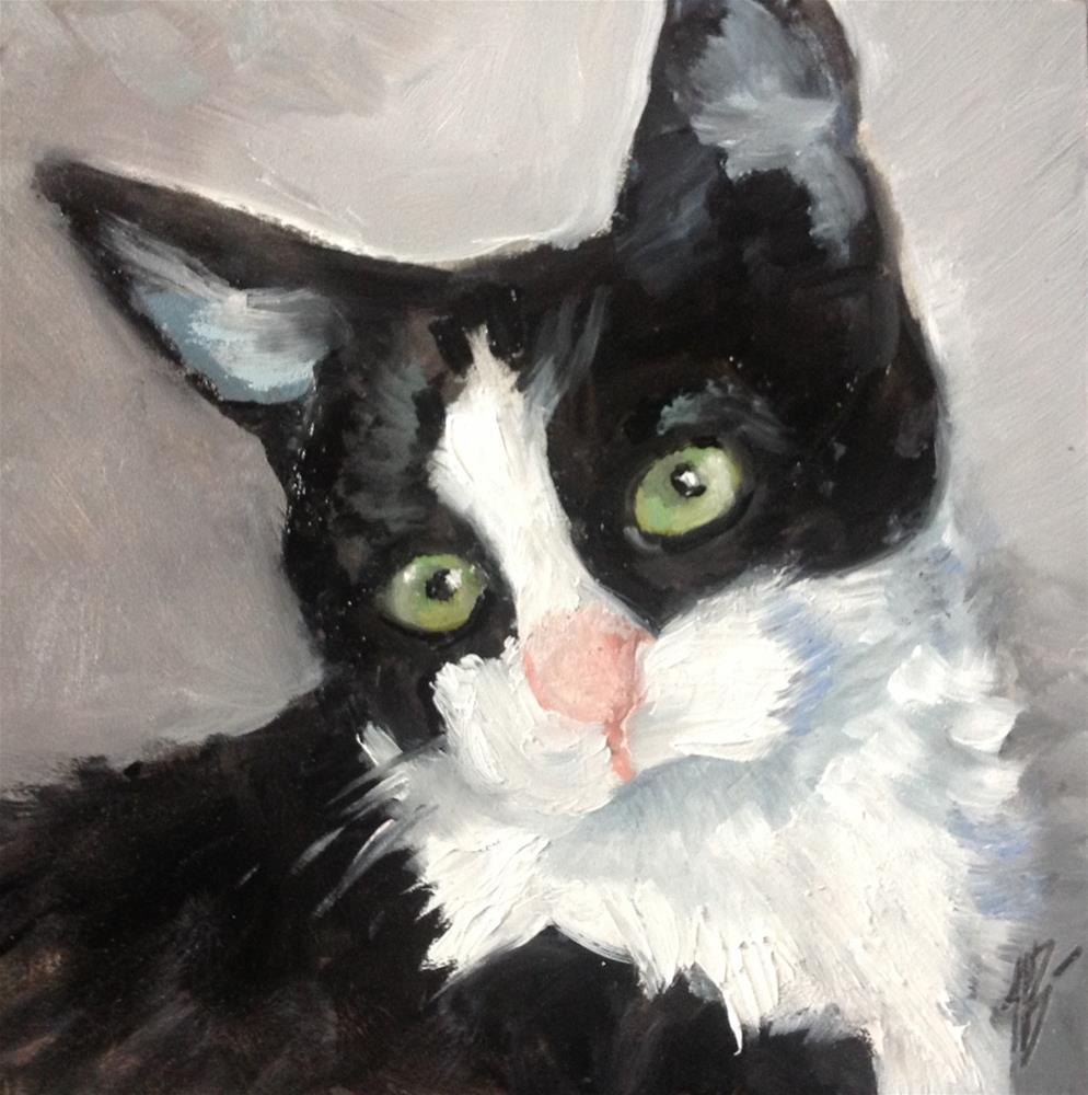 """Black and white Kitten"" original fine art by Annette Balesteri"