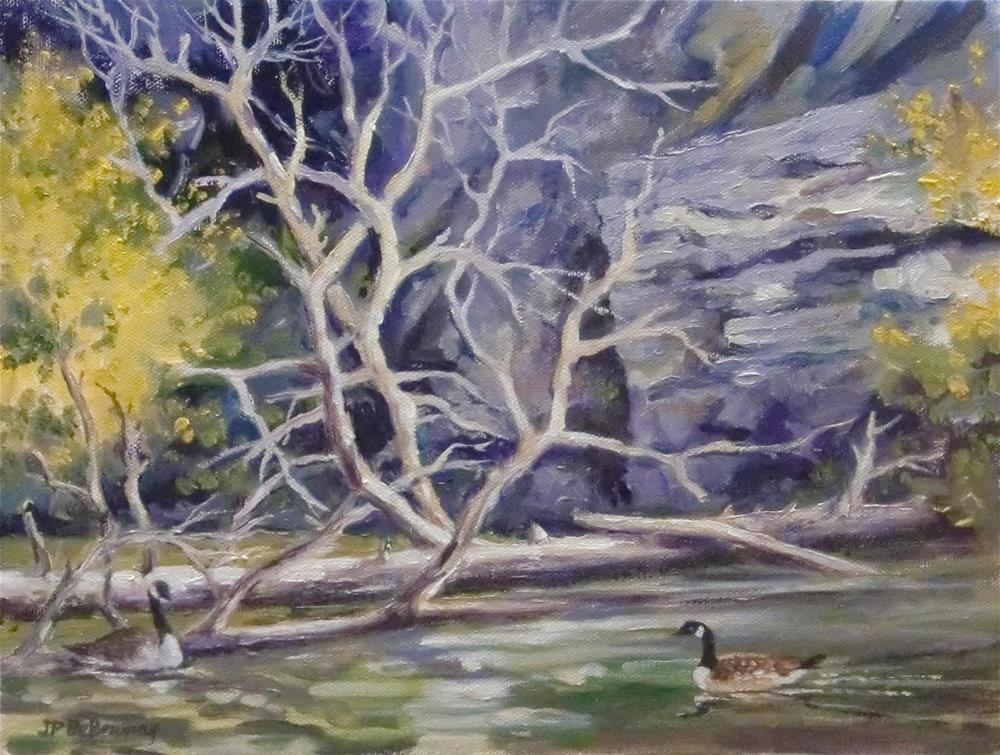 """11 Mile Canyon geese"" original fine art by Jean Pierre DeBernay"