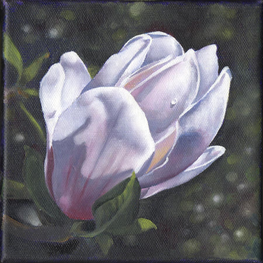 """SOUTHERN MAGNOLIA floral oil painting"" original fine art by Barbara Fox"