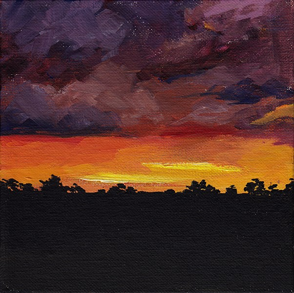 """Fire in the Sky"" original fine art by J M Needham"