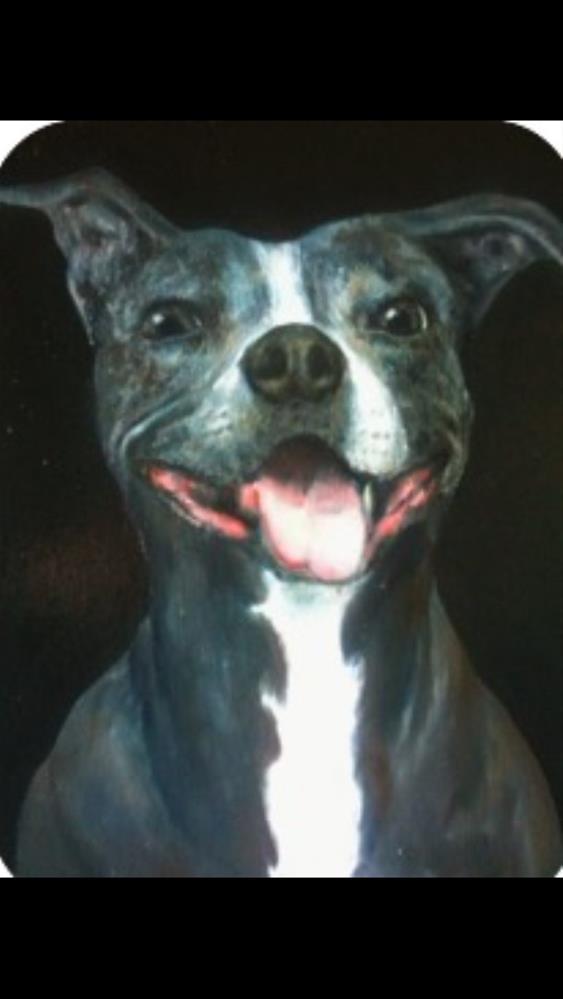 """""""Pet portrait commissions"""" original fine art by Eric Clay Dean"""