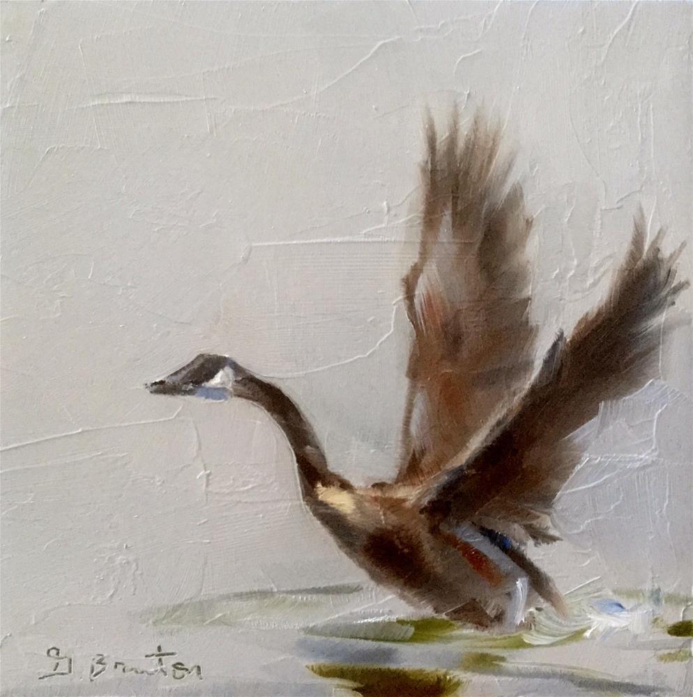 """Canada Goose Takeoff"" original fine art by Gary Bruton"