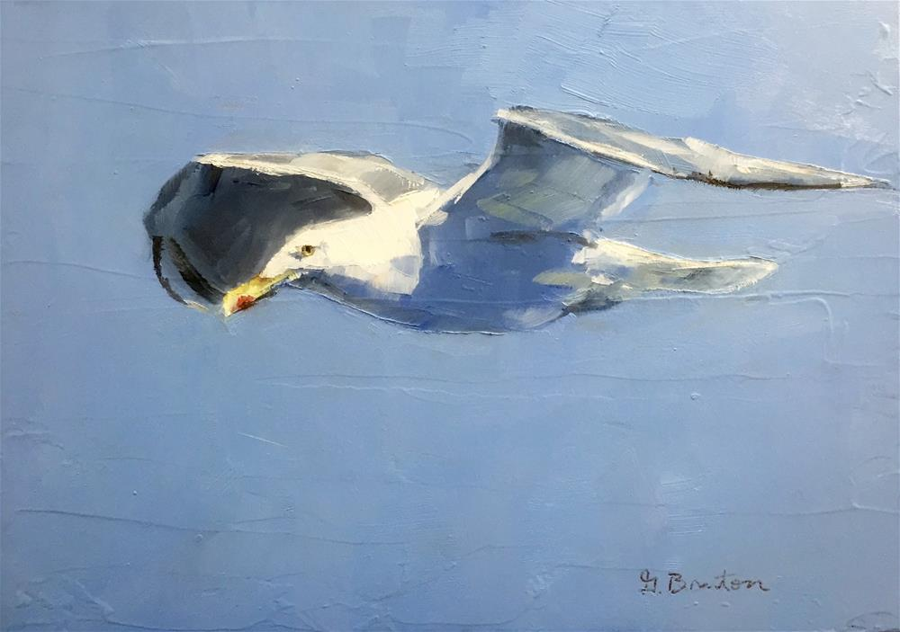 """""""Herring Gull"""" original fine art by Gary Bruton"""