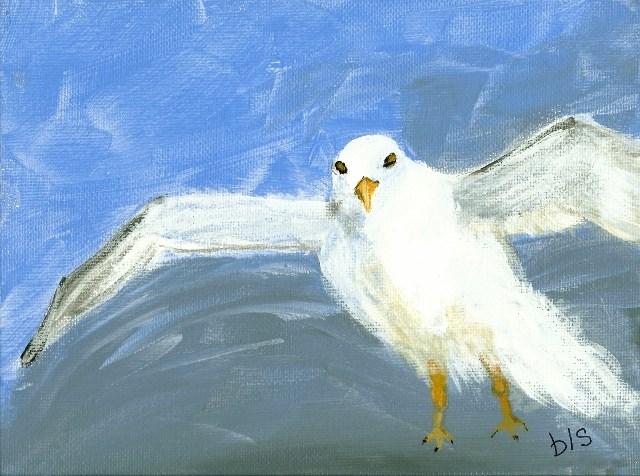 """Key West Seagull"" original fine art by Brenda Smith"