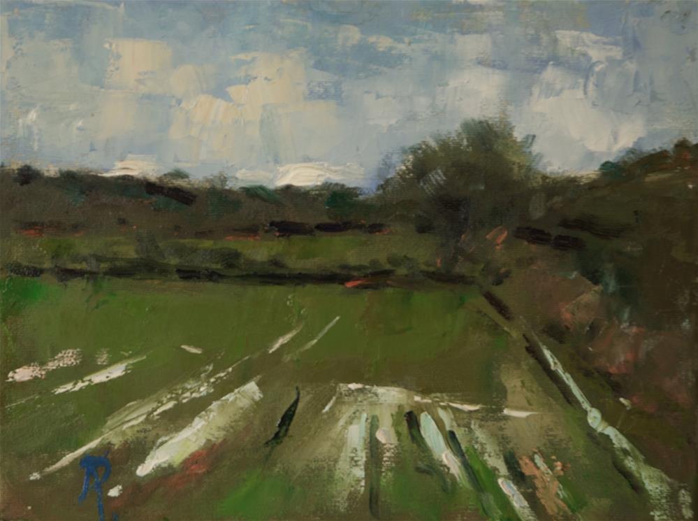 """""""'Wet Field'"""" original fine art by Andre Pallat"""