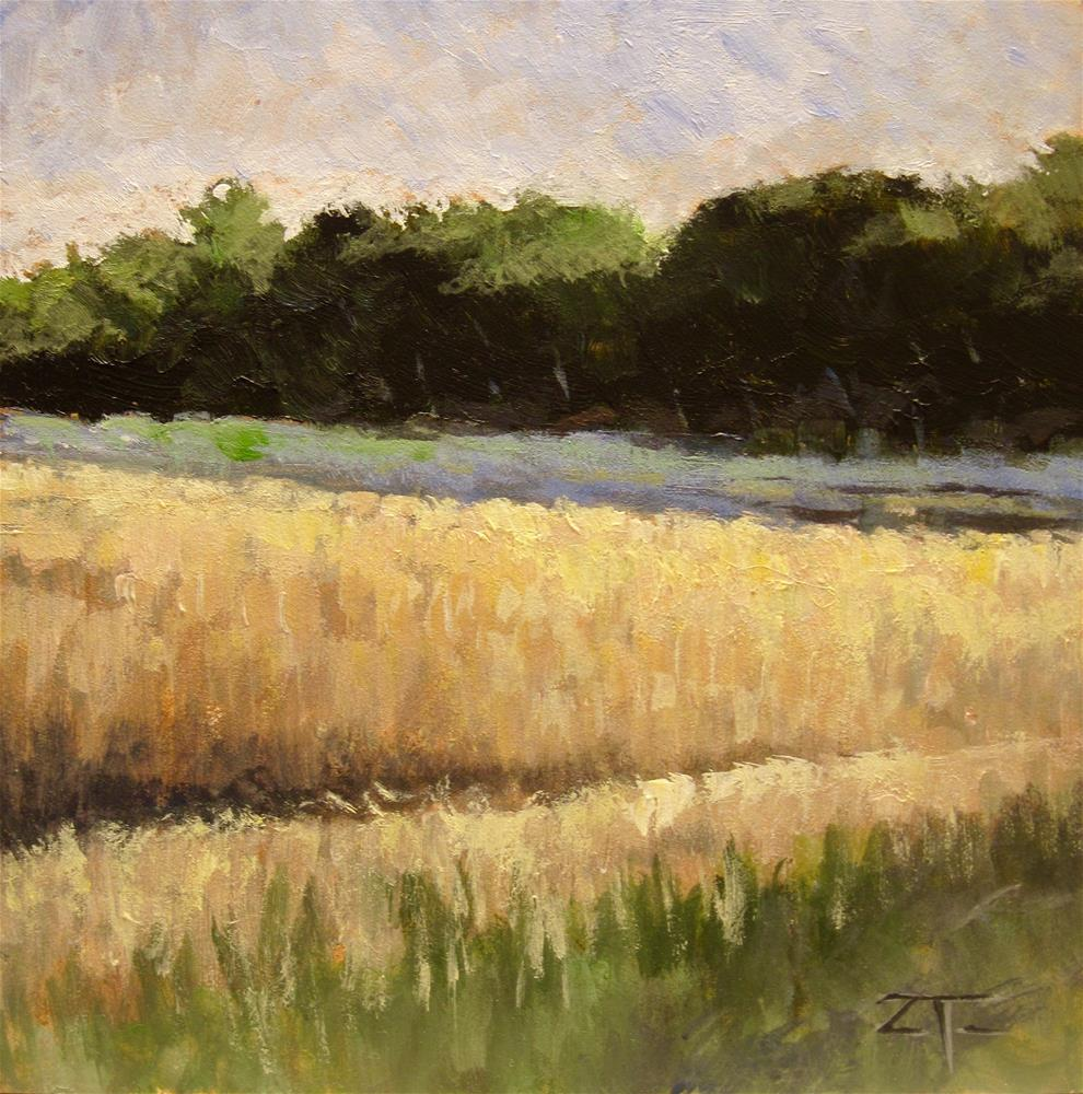 """Field Shadows"" original fine art by Zack Thurmond"
