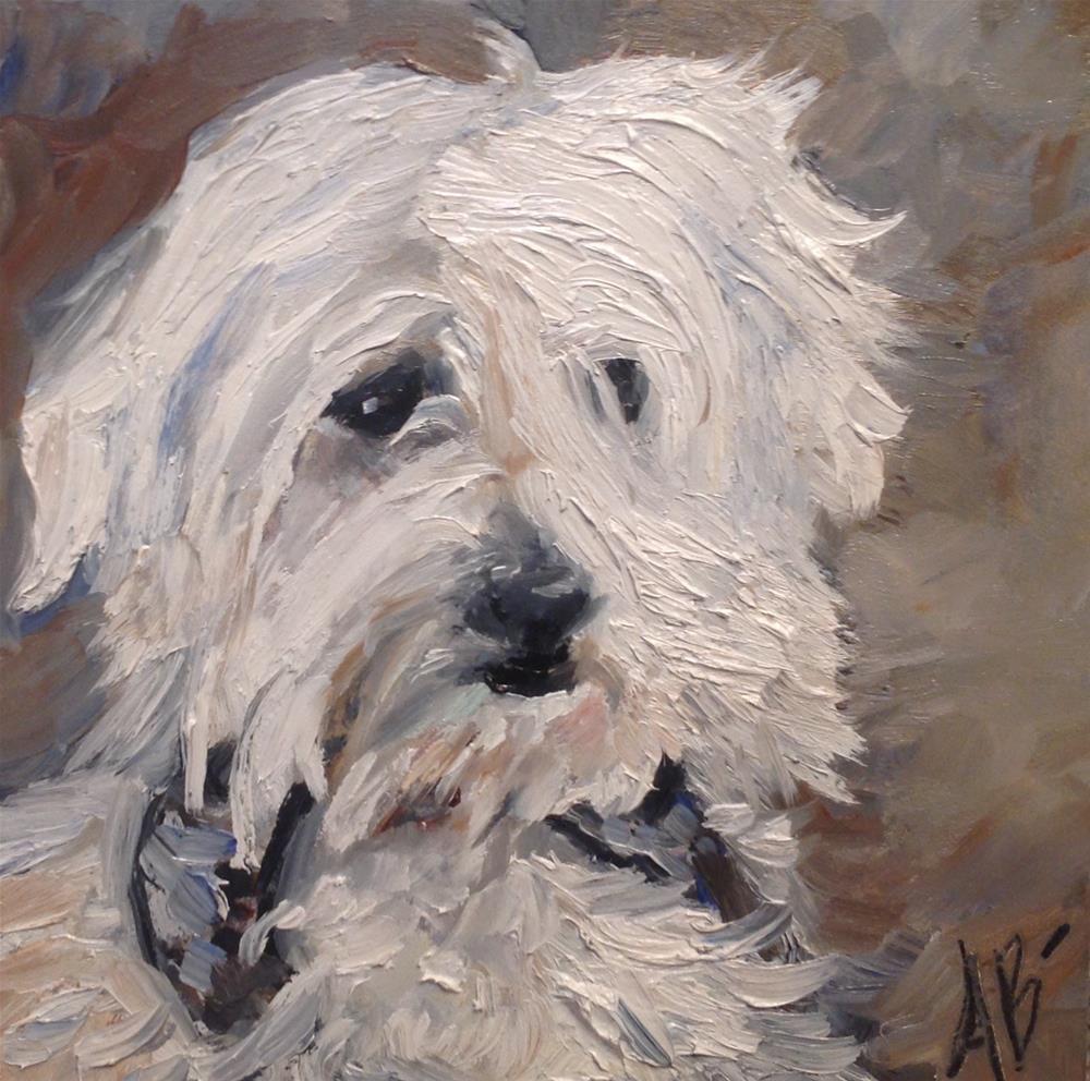 """Flynn"" original fine art by Annette Balesteri"