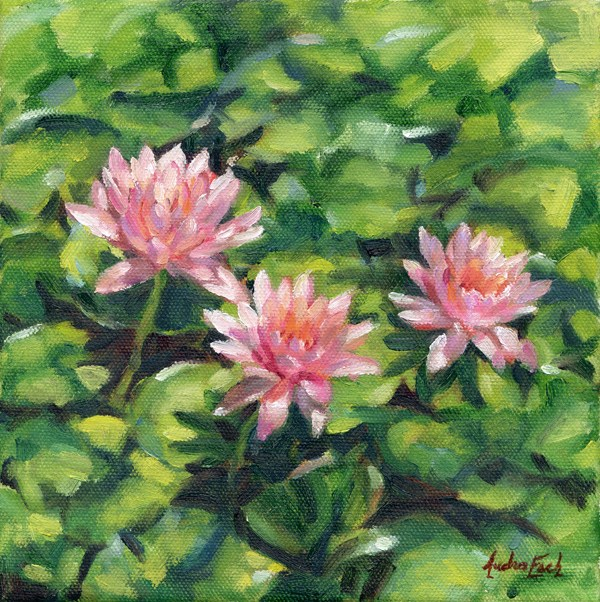"""Pale Pink Waterlilies"" original fine art by Audra Esch"