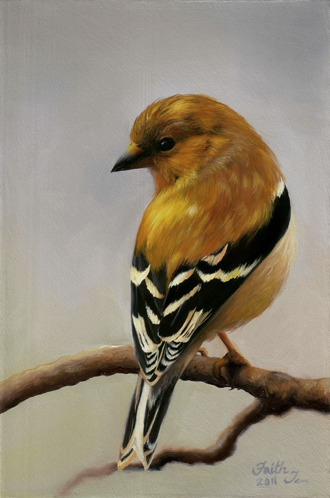 """Goldfinch"" original fine art by Faith Te"