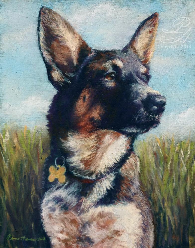"""Juno"" original fine art by Pamela Hamilton"