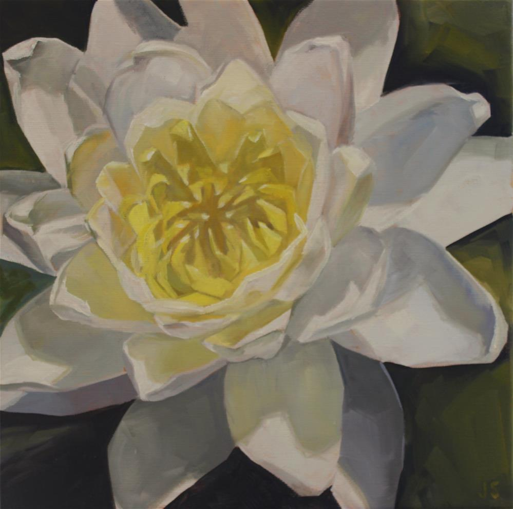 """White Water Lily"" original fine art by Jamie Stevens"