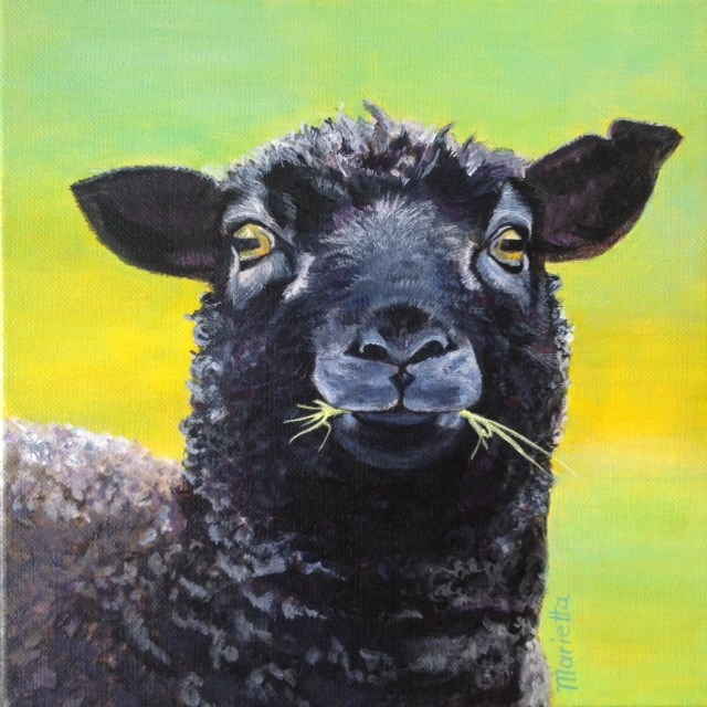 """ Baa Baa Black Sheep! "" original fine art by Marietta Modl"