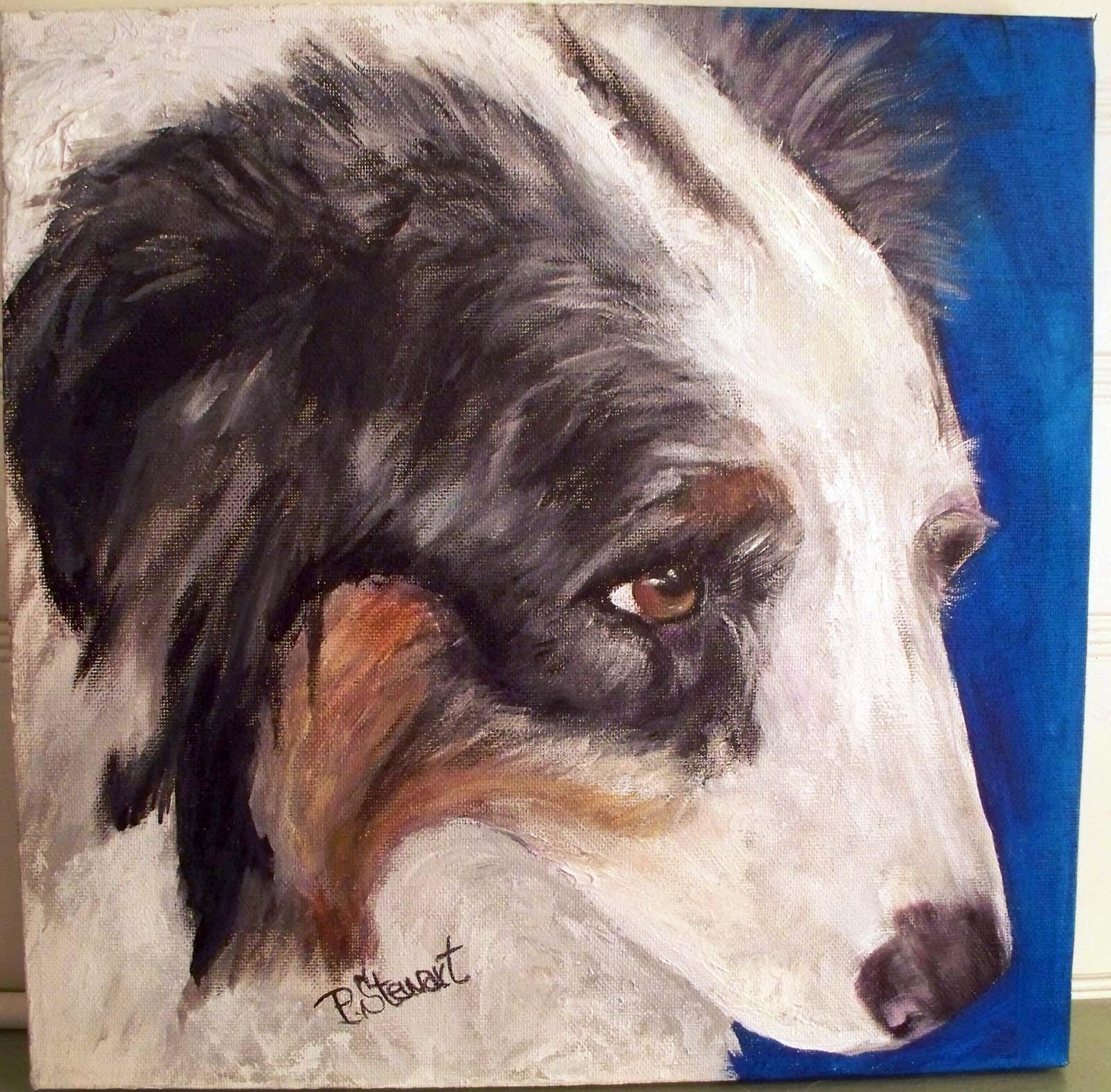 """""""Australian Shepherd Dog  Pet Portrait named Boo!"""" original fine art by Penny Lee StewArt"""