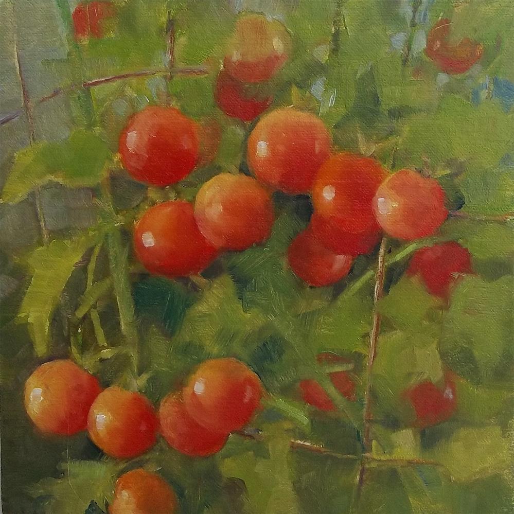 """Garden Tomatoes"" original fine art by Nancy  Spinadel"