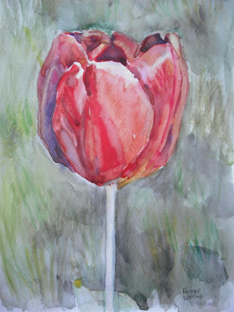 """Forthright Tulip"" original fine art by Heather Whiting"