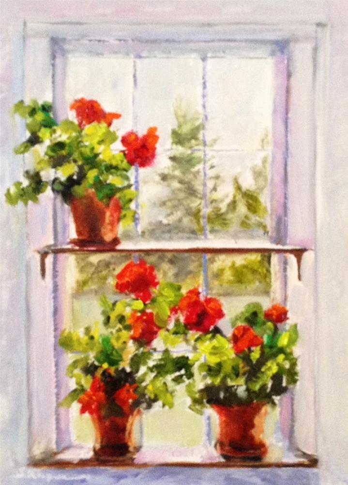 """""""Geraniums in an Old Maine Window"""" original fine art by Shelley Koopmann"""
