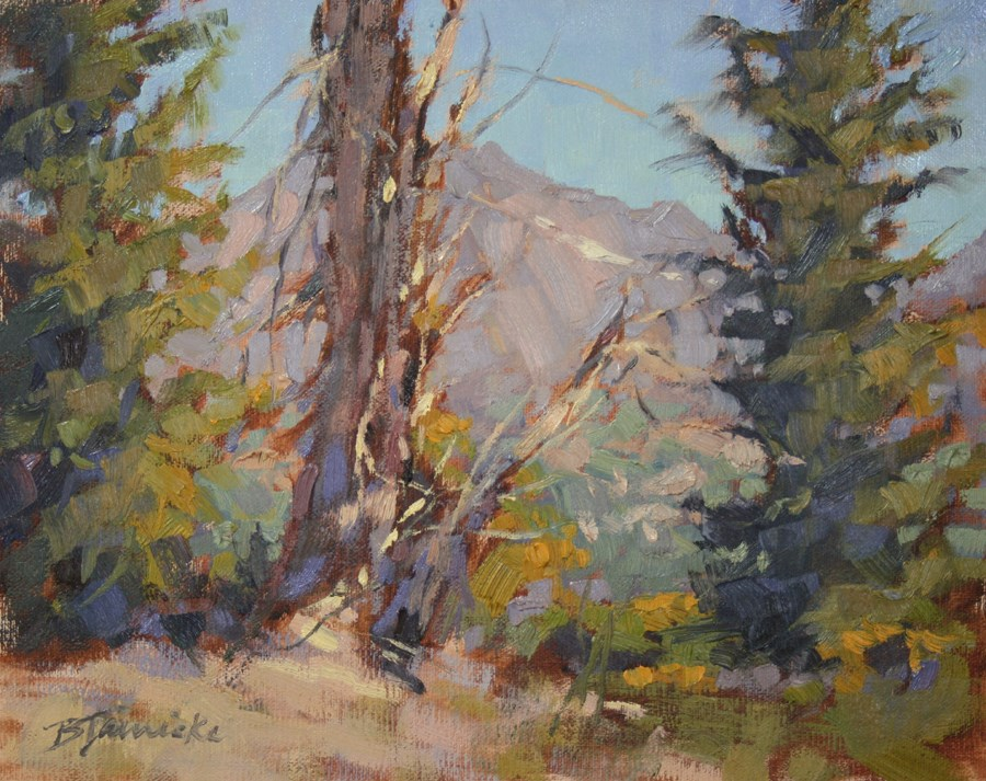 """A Change in Altitude"" original fine art by Barbara Jaenicke"