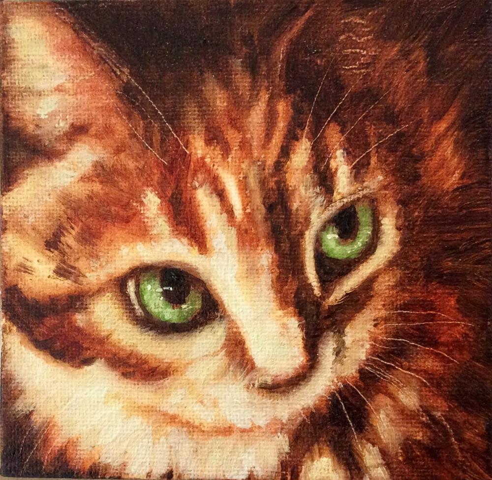"""""""Tabbina"""" original fine art by Karen Roncari"""