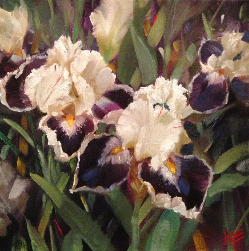 """White Irises 12x12 on thick gallery wrap canvas"" original fine art by Krista Eaton"