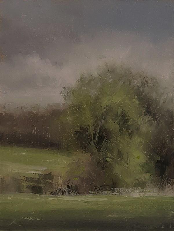 """Hedgerow"" original fine art by Neil Carroll"