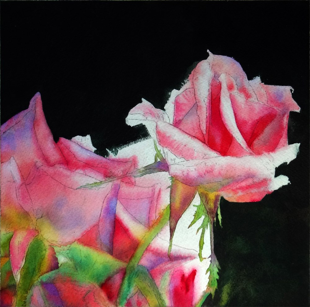 """Pink Ladies (WIP)"" original fine art by Arena Shawn"