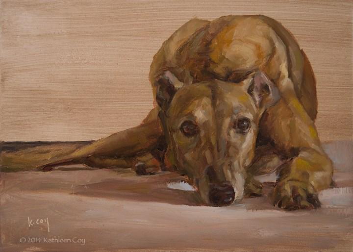 """""""Day 17 - Greyhound"""" original fine art by Kathleen Coy"""