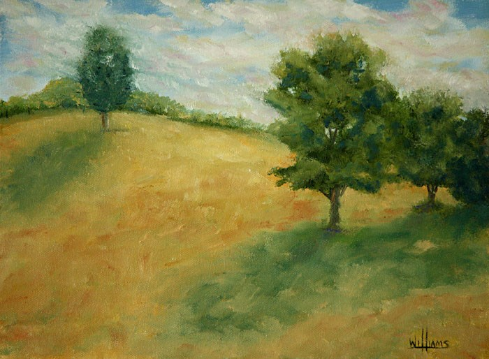 """Afternoon Shadows"" original fine art by Sunny Williams"