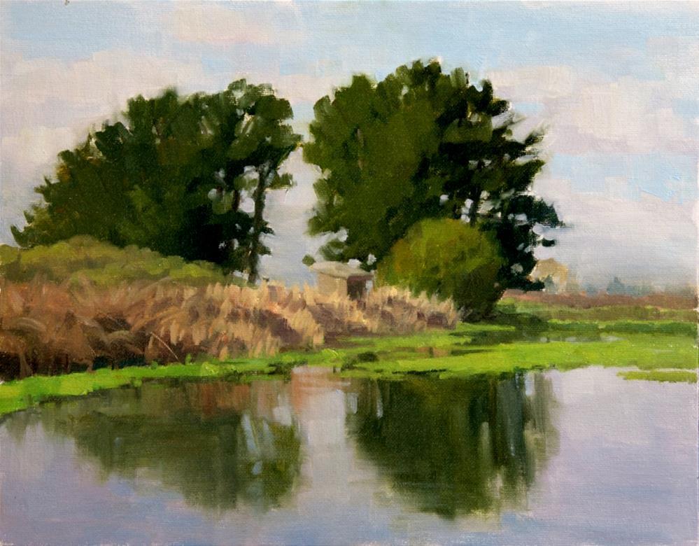 """Mornng Light-Arcata Marsh"" original fine art by Kathy O'Leary"
