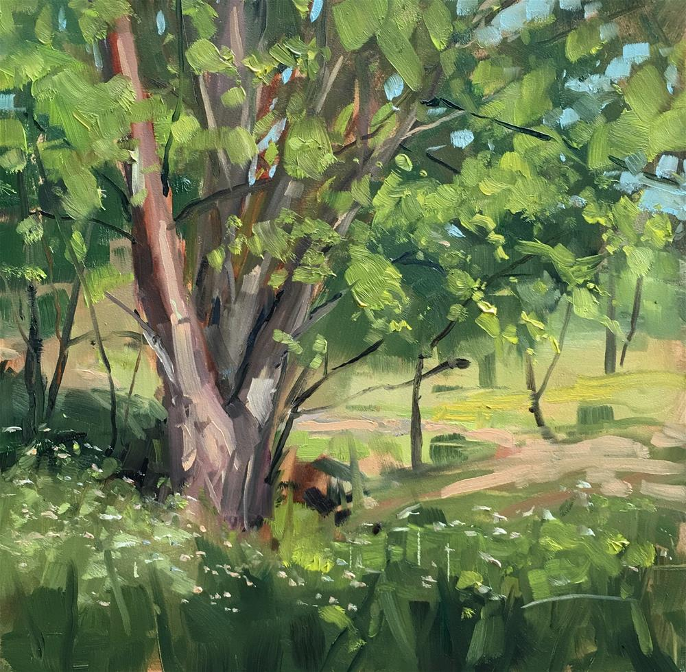 """332 State Park Afternoon"" original fine art by Patty Voje"