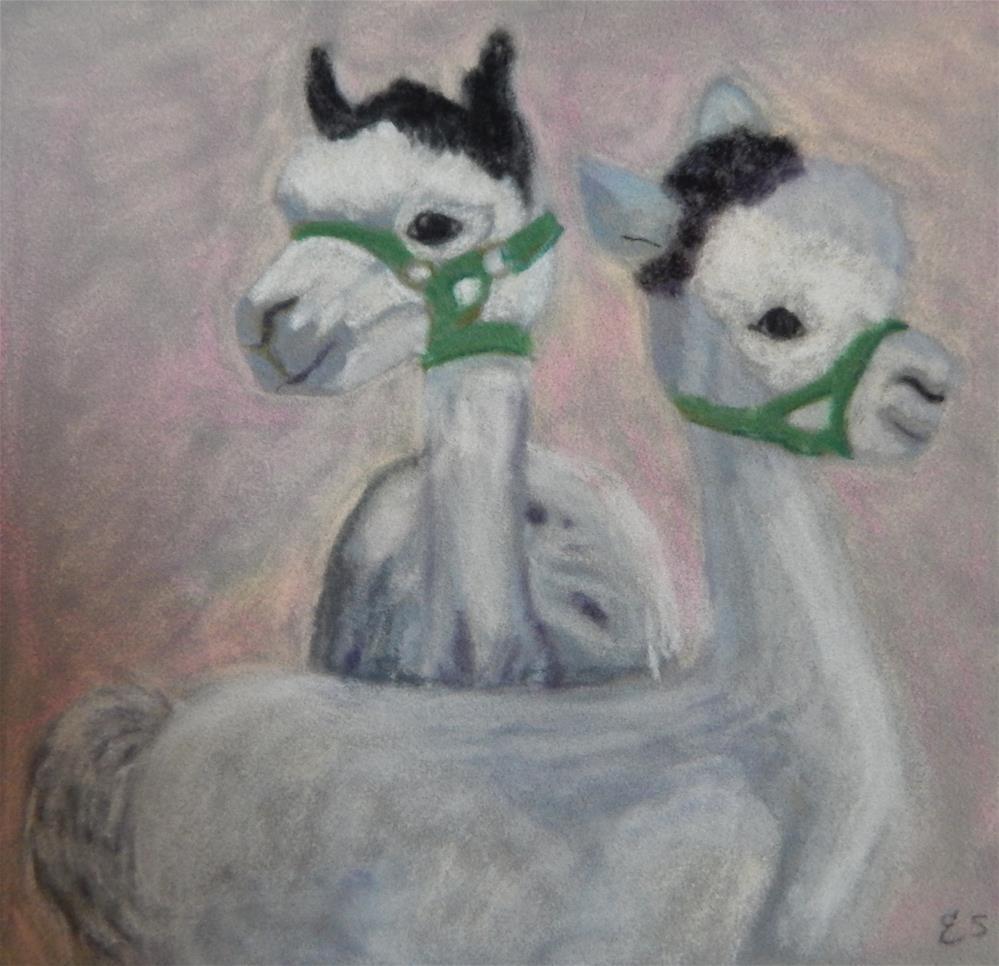 """A Pair of Alpacas"" original fine art by Elaine Shortall"