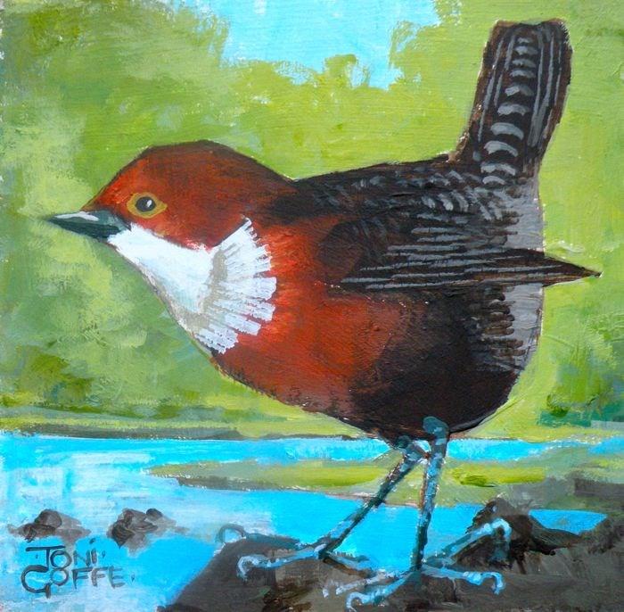 """""""Dipper"""" original fine art by Toni Goffe"""
