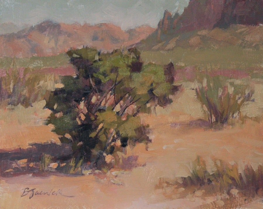 """Desert Shadows"" original fine art by Barbara Jaenicke"