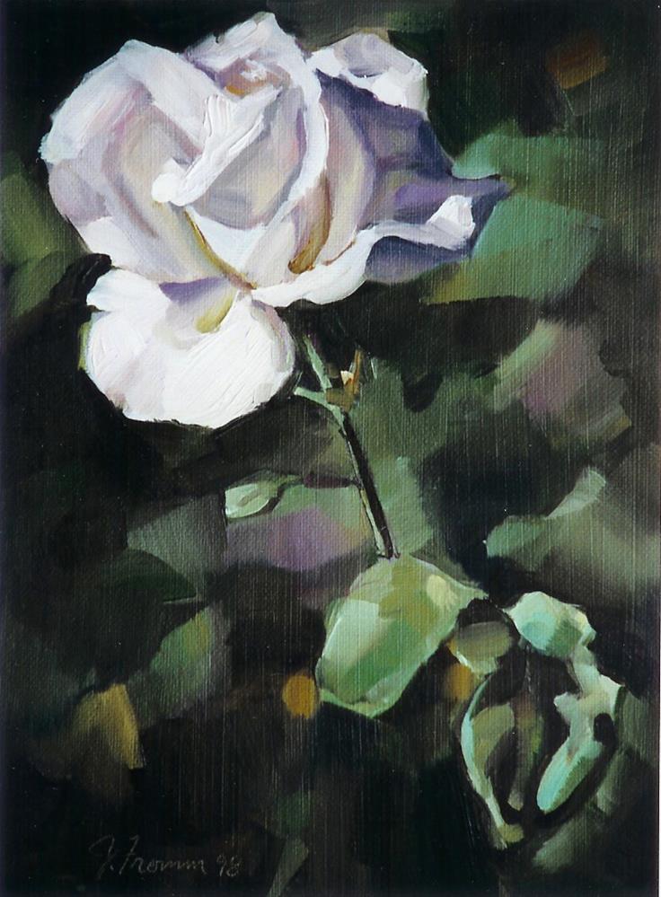 """England's Rose"" original fine art by Jeannette Fromm"
