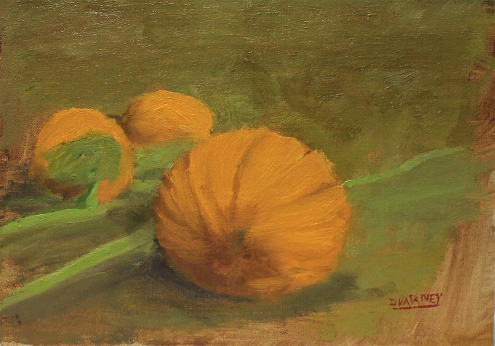 """Pumpkin study"" original fine art by Daniel Varney"