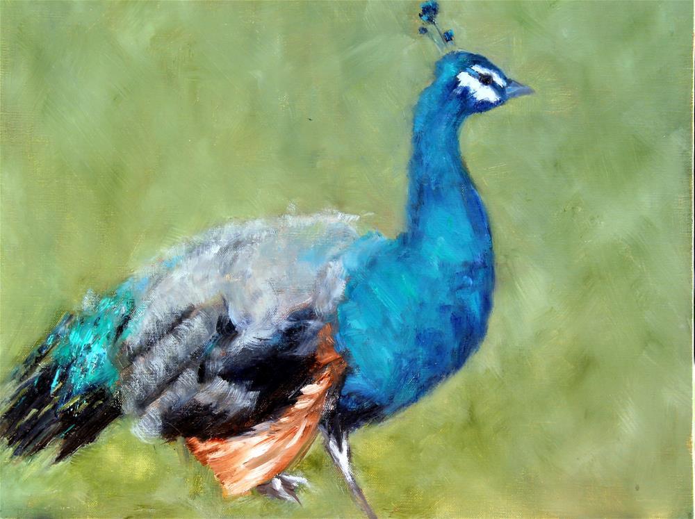 """""""Peacock"""" original fine art by Karen Solorzano"""