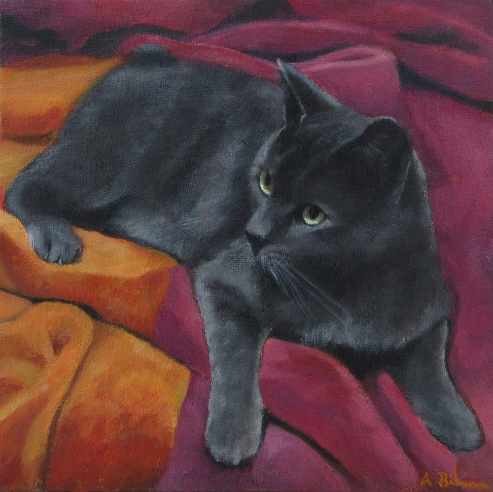 """Comfy Cat"" original fine art by Amanda Bilson"