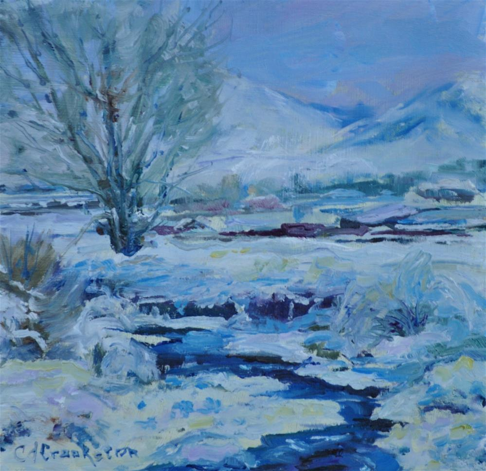 """Snow, Snow and More Snow"" original fine art by Catherine Crookston"