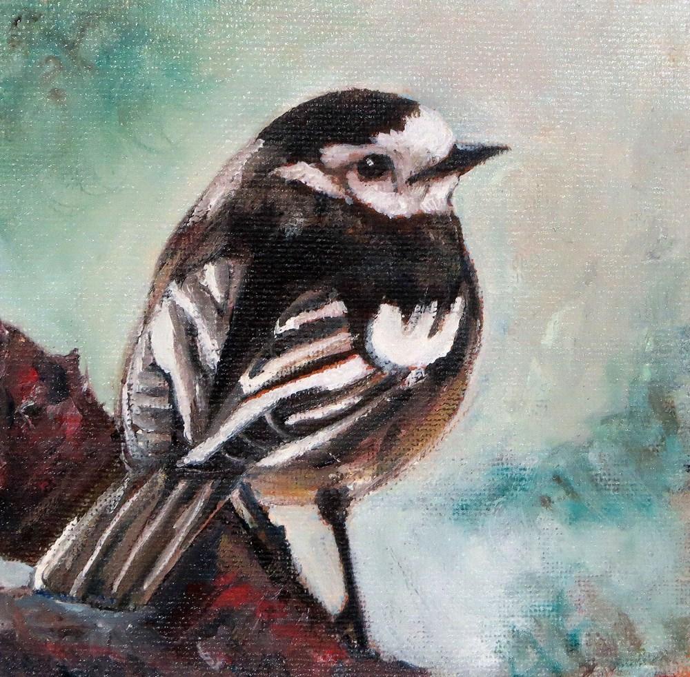 """Pied Wagtail"" original fine art by Susan  Mackenzie"