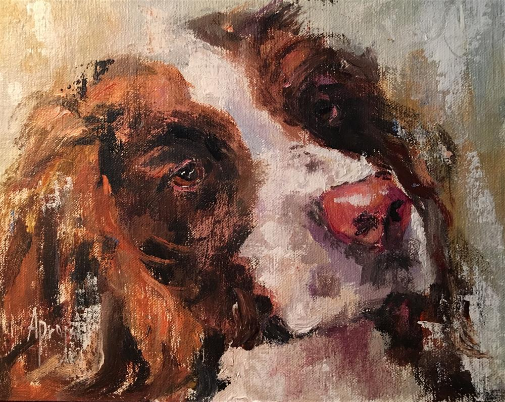 """Spaniel"" original fine art by Anne Marie Propst"