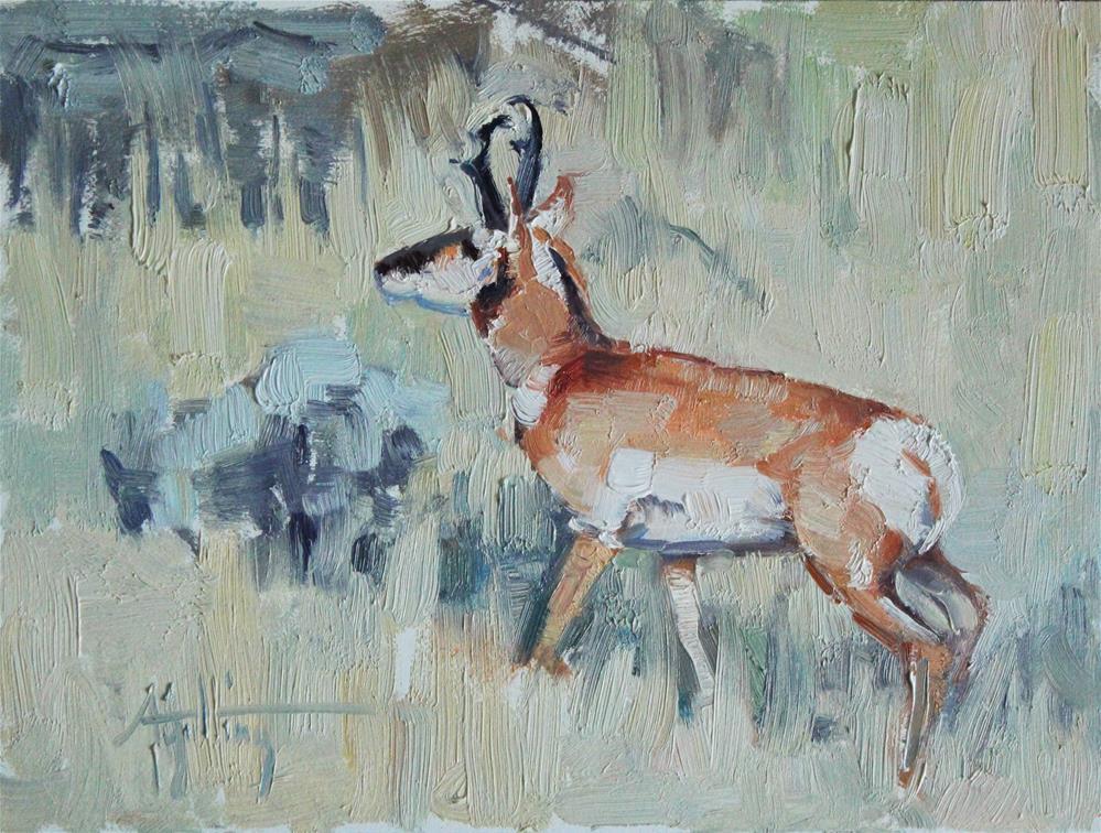 """Antelope Study #5"" original fine art by Abigail Gutting"